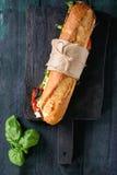 Вегетарианский сандвич багета Стоковые Изображения RF