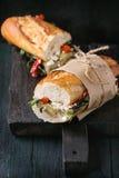 Вегетарианский сандвич багета Стоковое фото RF