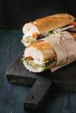 Вегетарианский сандвич багета Стоковое Изображение