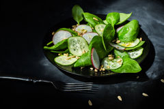Вегетарианский салат смешивания весны Стоковая Фотография