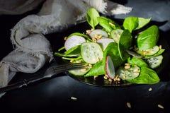 Вегетарианский салат с шпинатом Стоковые Изображения RF