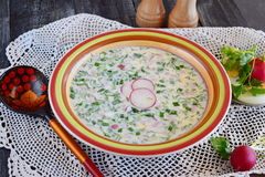 Вегетарианский холодный суп сделанный овощей: картошка, редиска, укроп, огурец, с югуртом в керамическом шаре традиционно Стоковая Фотография RF