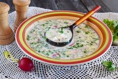 Вегетарианский холодный суп сделанный овощей: картошка, редиска, укроп, огурец, с югуртом в керамическом шаре традиционно Стоковые Фотографии RF