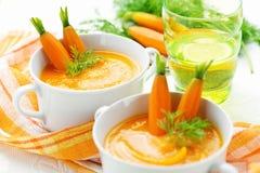Вегетарианское пюре супа стоковое изображение