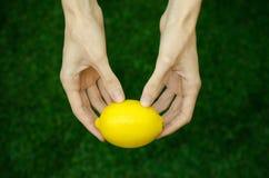 Вегетарианцы и свежий фрукт и овощ на природе темы: человеческая рука держа лимон на предпосылке зеленой травы t Стоковое Изображение