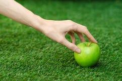 Вегетарианцы и свежий фрукт и овощ на природе темы: человеческая рука держа зеленое яблоко на предпосылке зеленого g Стоковая Фотография RF