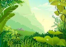 вегетация валов джунглей Амазонкы плотная иллюстрация штока