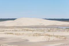 Вегетация на дюнах на Lagoa делает национальный парк Peixe стоковое изображение rf