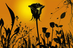 вегетация Стоковое Фото