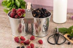 Ведра металла с свежими ягодами Стоковое фото RF