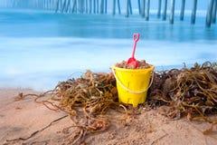 Ведро и келп пляжа Стоковое Изображение RF