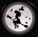 ведьма кота иллюстрация вектора