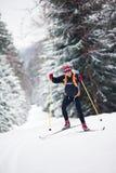 Вездеходное катание на лыжах Стоковые Изображения