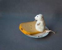 Везение и наслаждение Мышь и сыр стоковые изображения