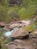 Вездеход девственницы, национальный парк Сиона, Юта Стоковые Изображения