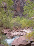 Вездеход девственницы, национальный парк Сиона, Юта Стоковые Фото