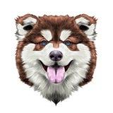 Векторные графики эскиза симметрии головы собаки Стоковое Изображение