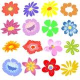 Векторы цвета цветков Стоковые Изображения RF