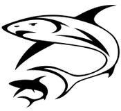 вектор акулы Стоковые Фотографии RF