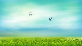 Вектор ландшафта лета Стоковое Изображение