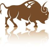 Вектор буйвола бизона Стоковые Изображения RF
