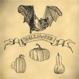 вектор вампира знахарки мрачного жнеца иллюстрации halloween установленный Стоковые Изображения