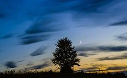 вектор вала захода солнца иллюстрации сиротливый Стоковое Изображение RF