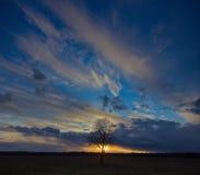 вектор вала захода солнца иллюстрации сиротливый Стоковые Фотографии RF