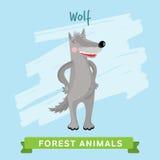 Вектор волка, животные леса Стоковые Фотографии RF