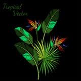 Вектор вышивки тропический Стоковая Фотография RF