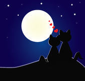 вектор влюбленности иллюстрации котов Стоковое фото RF