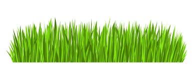 Вектор границы зеленой травы бесплатная иллюстрация