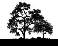 Вектор деревьев