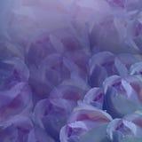 вектор детального чертежа предпосылки флористический предпосылка цветет пурпур Свет-голубые розы цветков флористический коллаж тю Стоковое Фото