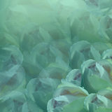 вектор детального чертежа предпосылки флористический Цветки на предпосылке бирюзы Свет-бирюза цветет розы флористический коллаж т Стоковые Изображения RF