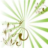 вектор детального чертежа предпосылки флористический Стоковые Изображения