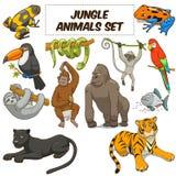 Вектор джунглей шаржа установленный животными стоковое фото
