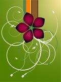 вектор зеленого цвета листва цветка Стоковая Фотография