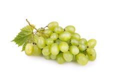 вектор зеленой иллюстрации виноградин пука реалистический Стоковые Фотографии RF