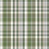 вектор зеленой картины клетки безшовный Стоковая Фотография