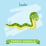 Вектор змейки, животные леса Стоковое Изображение RF