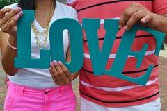 вектор знака сетки влюбленности стоковые изображения