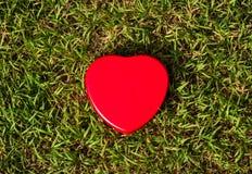 вектор знака сетки влюбленности Стоковое фото RF
