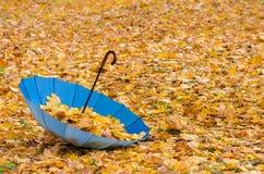 вектор зонтика иллюстрации предпосылки осени Стоковое Изображение