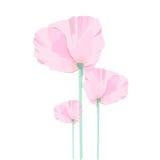 Вектор дизайна цветка стоковое фото rf