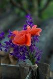 вектор изображения цветка букета яркий Стоковое Изображение RF