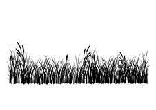 вектор изолированный травой Стоковые Изображения RF