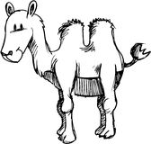вектор иллюстрации верблюда схематичный Стоковые Фото