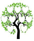 Вектор иллюстрации концепции фамильного дерев дерева Стоковая Фотография