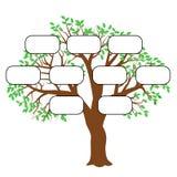 Вектор иллюстрации концепции фамильного дерев дерева Стоковое Фото